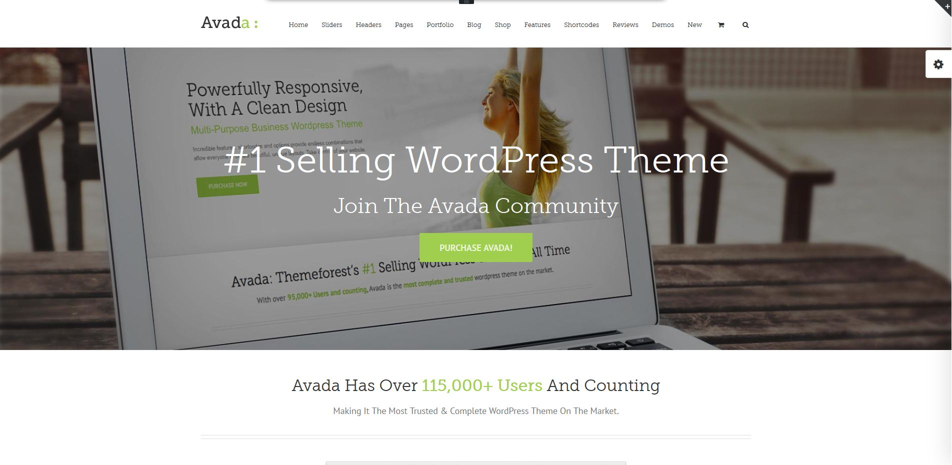Avada Theme Onlinedemo