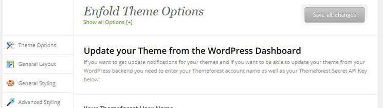 Theme Updates Enfold Theme