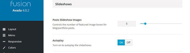 Slideshow Options