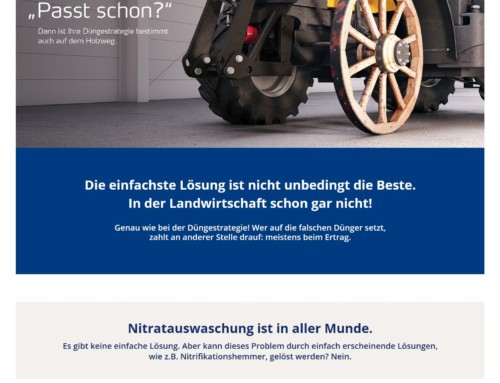 Webdesign Yara – Passt schon.de