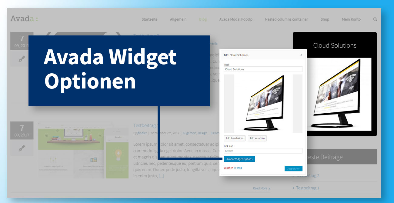 Avada Widget Optionen