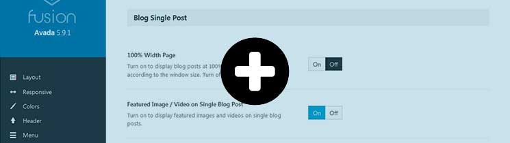 Blog-Single-Post-Avada-Theme-Options