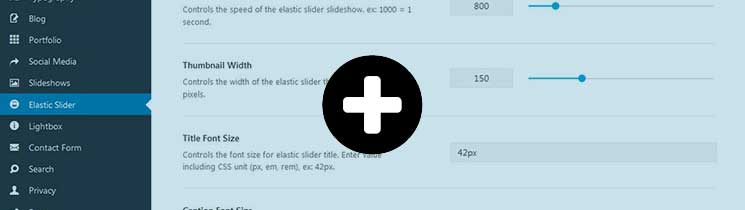 Elastic-Slider-Avada-Theme-Options