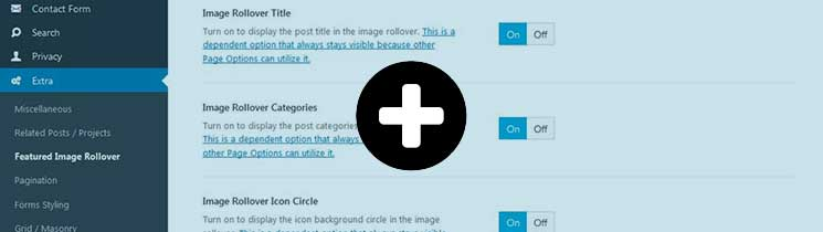 Featured-Image-Rollover-Avada-Theme-Options