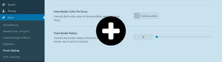 Forms-Styling-Avada-Theme-Options