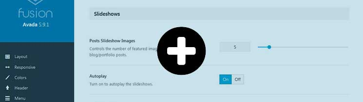 Slideshows-Avada-Theme-Options