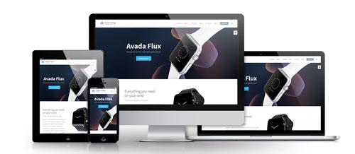 Avada Theme Webdesign Service
